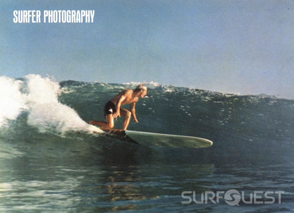 surfquest's picture